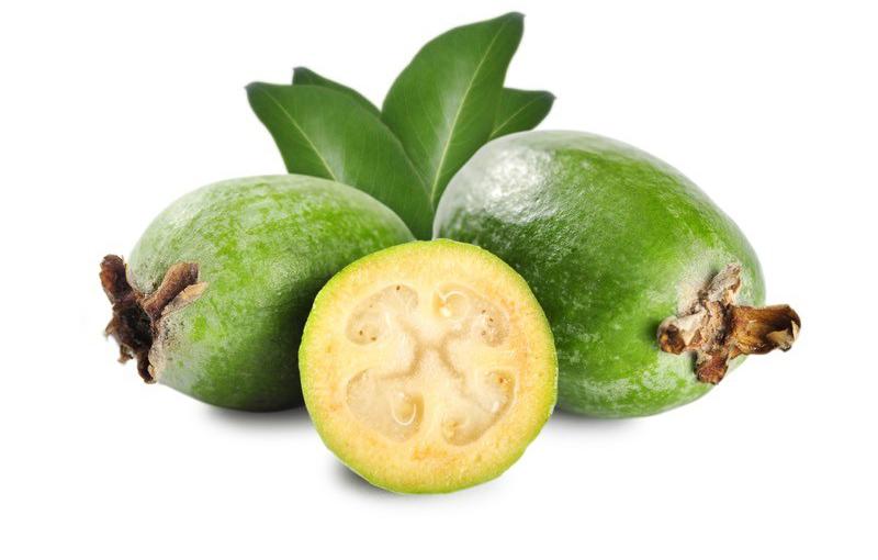 Photo of Geleceği Parlak Bir Meyve: Feijoa (Kaymak Ağacı)